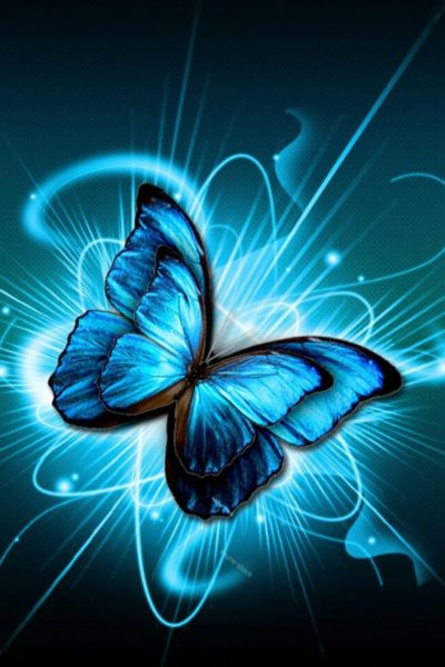 Butterfly-Wallpaper-for-Android-Lovely-DZPN