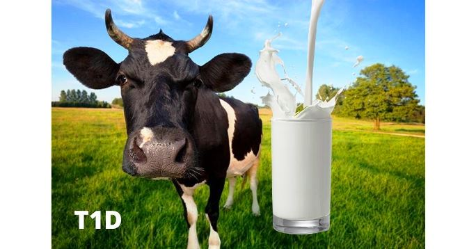 Smiju li dijabetičari piti mlijeko?