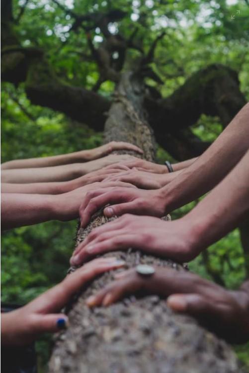 Kad se male ruke slože – sve se može